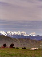 life in the valley ii by qwe645rty282