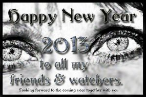 Happy New Year 2013. I see you! by KarinClaessonArt