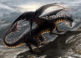 BLACK DRAGON by Shafiqur