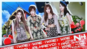 T-ara N4 ver.10 by Jover-Design
