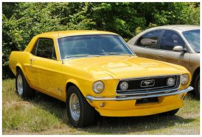 A Yellow Ford Mustang by TheMan268