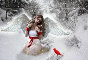 The Winter Angel by SuzieKatz