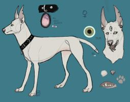 Custom design for ToothBones by Tooel
