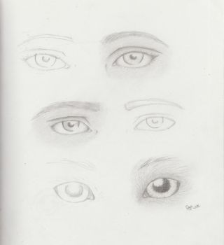 eye study by calink12