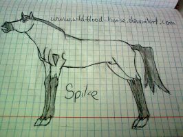 Spike horse by Wild-Blood-Horse