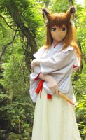 Ku-Gen In the mistic forest.@ Jul. 2013 - 2 by chocolate-array