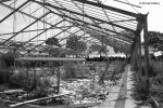 Greenhouse / Gewaechshaus 6 by bluesgrass