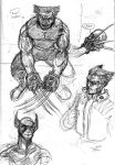 Sketches: Wolverine 2 by FWACATA