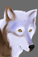 Wolf {Tablet Practice} by Game-Spirit