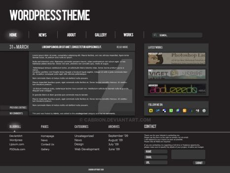 First Wordpress Theme Design by cabrion