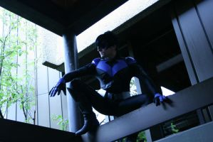 Nightwing by MiniNene