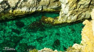 Opaque waters by Maltese-Naturalist