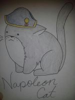 Dictator Cats: Napoleon by DragonEmpress3
