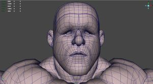 Stump 3D wireframe face by NMRosario