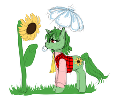 Yuuka Pony by Staris-Chan