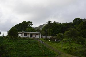 House in subtropical forest of Martinique by A1Z2E3R
