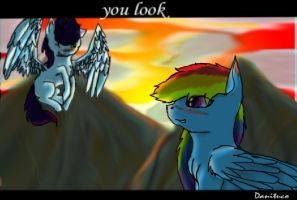 rainbow and soarin-you look at the sunset by danituco