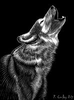 Wolf by Carles