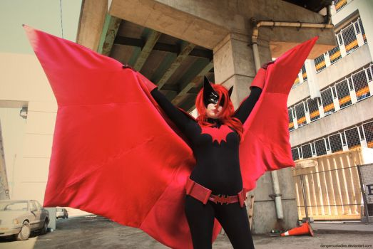 Who is Batwoman by dangerousladies