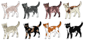 Cat Adoptables by TheK3nnel