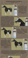 Shading Black Horses - Simple Tutorial by Paardjee