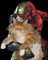 Master Chief is Overprotective by Bardo-Kudane