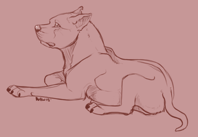 Pitbull commission by nightspiritwing
