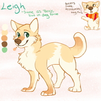 Leigh Reference -Dogsona by starsweep