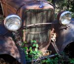 Ford Tough by StephGabler