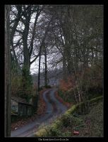 photo The Road by syrus