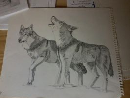 Wolves by LuebJ3093