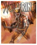 Wolverine old by marmoto