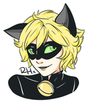 Chat Noir by RissyHorrorx