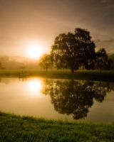 Morning Reflection by jnati