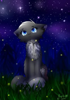 Cinderpelt - Missing you by PurpleNightTheKitty