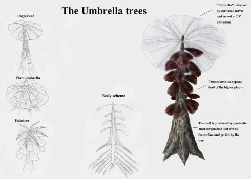 REP: The umbrella trees by Ramul