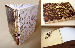 Chinese Style Book - Autumn Colours by Danisa-chan