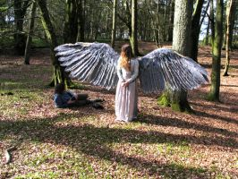 costume wings 3 by juliatheinnocent