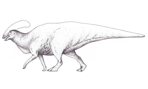 Another Lateral View... by Yutyrannus