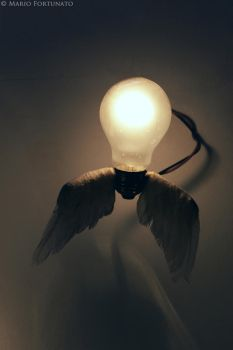 Bulb with wings by skullkill88