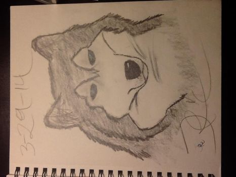 Hope you like my drawing by djpon3432