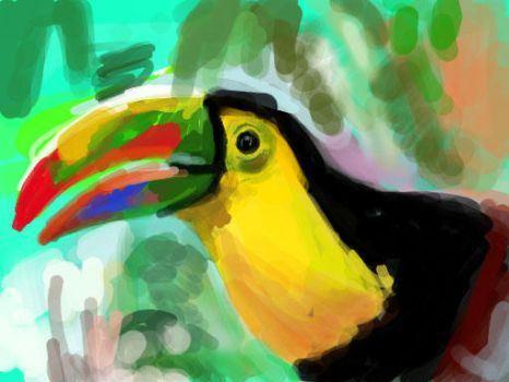 Colors - Toucan Sketch by kpopnonstop