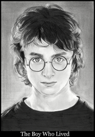 Harry Potter-The Boy Who Lived by basketcase04