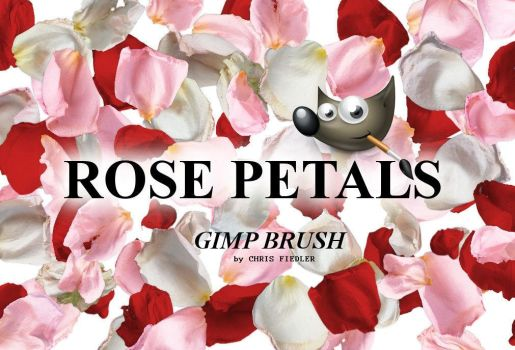 Rose Petals Brush by Chrisdesign