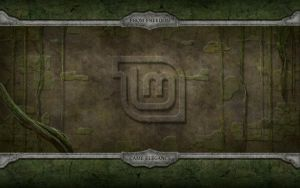Linux Mint Old Wall by samriggs