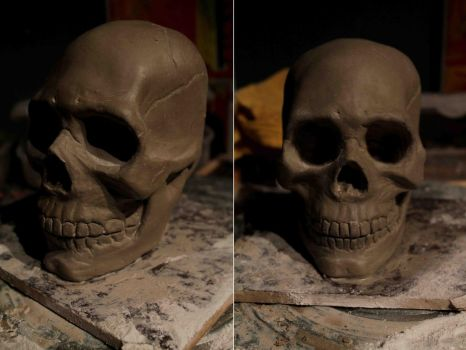 Skull WIP by TomsCreatures