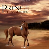 HEE Horse Image (Prince) by Christian-Cowgirl