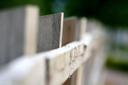 Rough Fencing1 by MarkTBSc