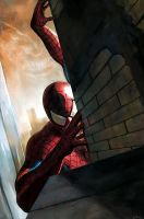 Spidey Is Watching by carstenbiernat