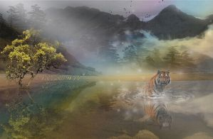 Tiger and the beach by ladyjudina